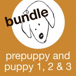 Prepuppy and Puppy 1, 2 & 3