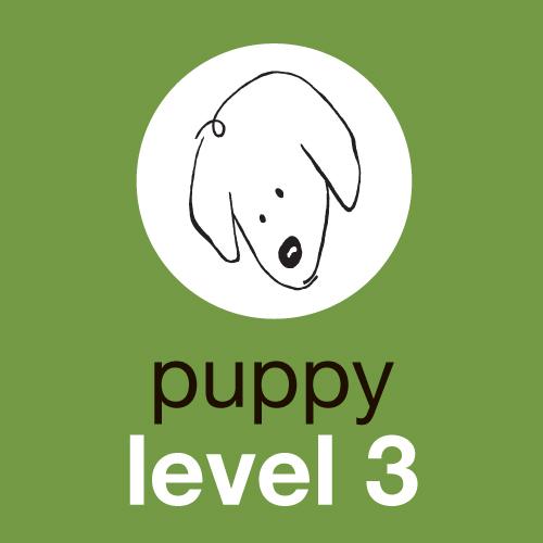 Puppy Level 3